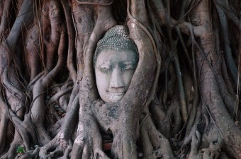 ayutthaya-temple-head
