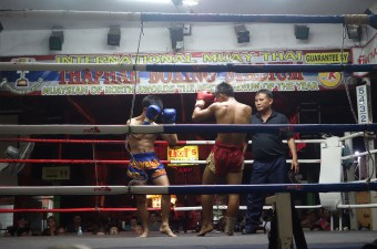 chang-mai-muay-thai-boxing